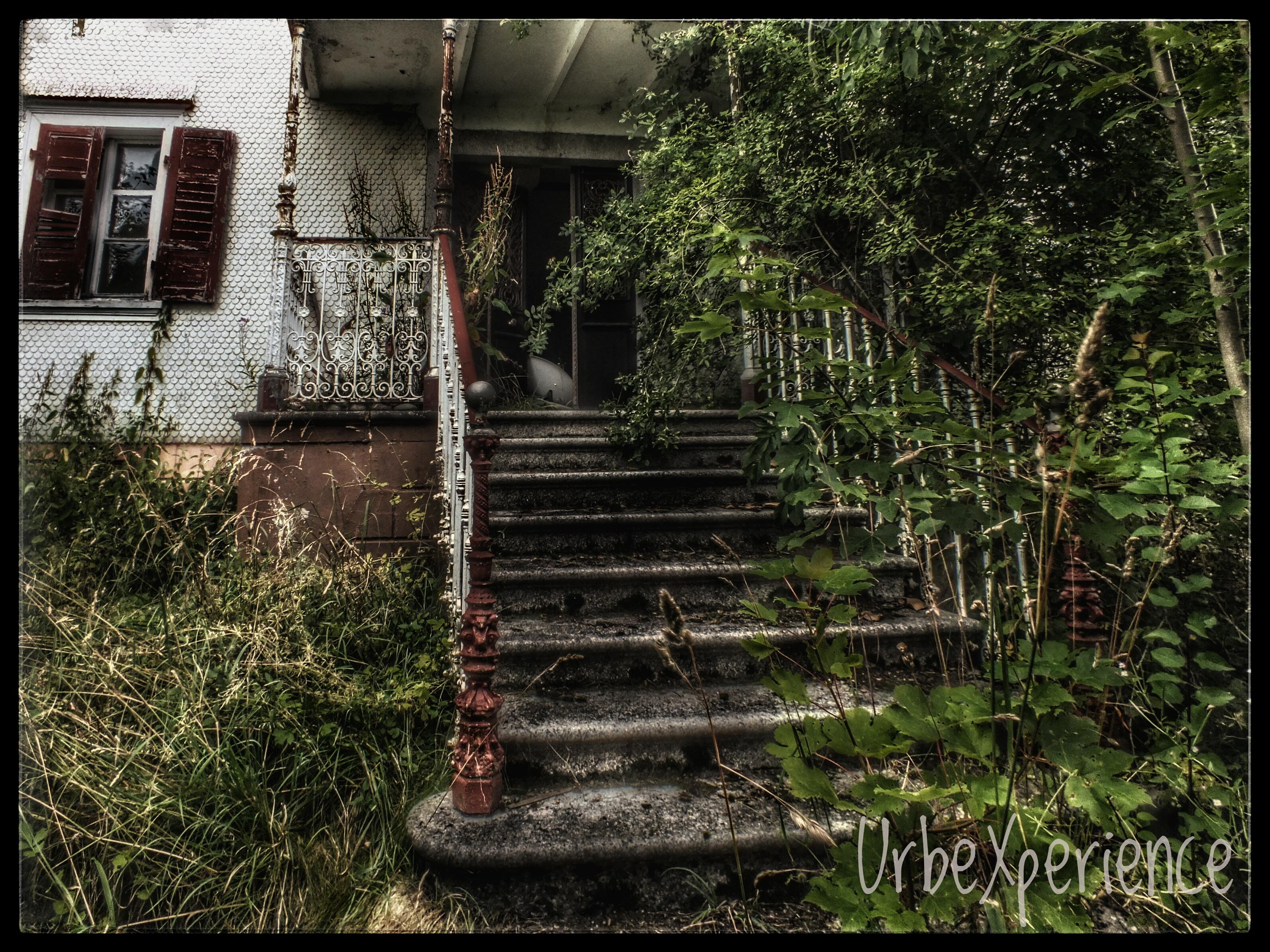 Overgrown villa
